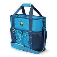 Arctic Zone 30Can Insulated Sport Tote BLUE