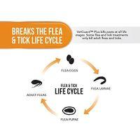 Vetguard Plus Flea & Tick Treatment For Dogs, Kills And Repels Fleas